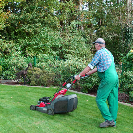 Sporkmann Grünpflege Gartenpfelge