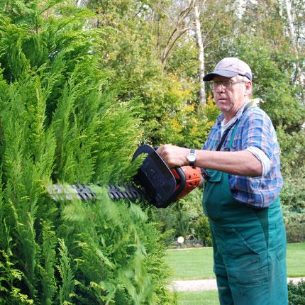 Sporkmann Grünpflege Hecken- und Gehölzschnitt